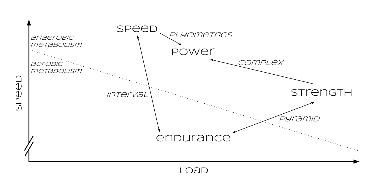æ intensity graph